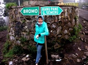 Pertigaan Bromo - Semeru