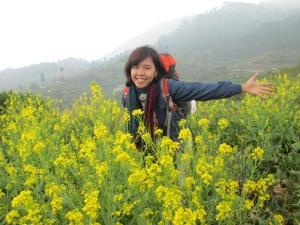 Eksotisme Gunung Prau. Berbunga-bungaaaa