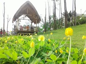 saung teduh